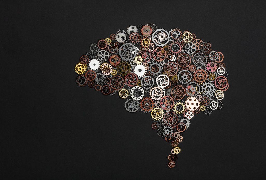 El cerebro actúa como un radar